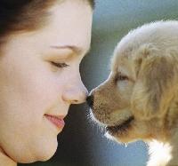 Strengthen family/pet bonds with fun, educational pet crafts for kids