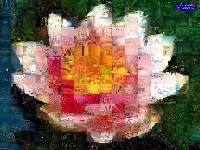AndreaMosaic: first free computer program for creating amazing photo mosaics