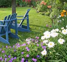 Durable flowers make gardening easy