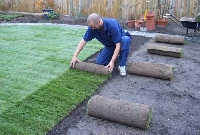Tips for laying turf include preparing the soil and caring for the sod