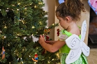 There are zillions of ways to decorate a Christmas tree for holiday celebrations