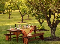 Set up outdoor dining with these tips on choosing the perfect location