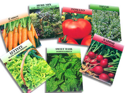 Tips on where should you buy vegetable seeds for the most prolific garden crop