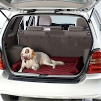 Keep your car protected while traveling with pets