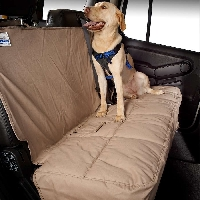 Don?t be afraid to let the dogs in the car with these simple tricks!