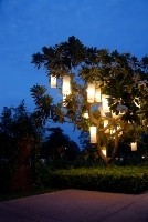 Great ideas for garden lighting to enhance your property.