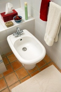 Learn about a plumbing fixture that is standard in most European homes.