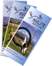 Picture of dog agility equipment from Agilite - Agility for Dogs catalog