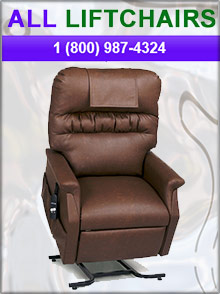 Picture of electric lift chairs from All Lift Chairs catalog