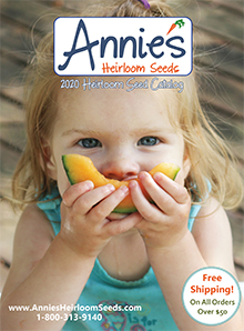 Picture of heirloom vegetable seeds from Annie's Heirloom Seeds catalog