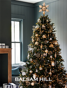 Picture of pre lit trees from Balsam Hill Christmas Tree Co catalog