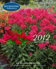 Picture of Bluestone Perennials from Bluestone Perennials catalog