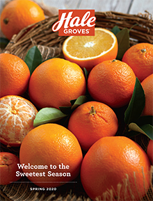 Picture of Florida oranges from Hale Groves - Southern Fulfillment catalog