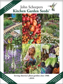 Picture of kitchen garden seeds from KitchenGardenSeeds.com catalog