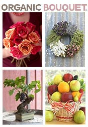 Picture of organic bouquet from Organic Bouquet catalog