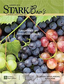 Picture of stark bros catalog from Stark Bro's catalog