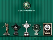 Picture of trophy golf awards from Winner's Award Group catalog