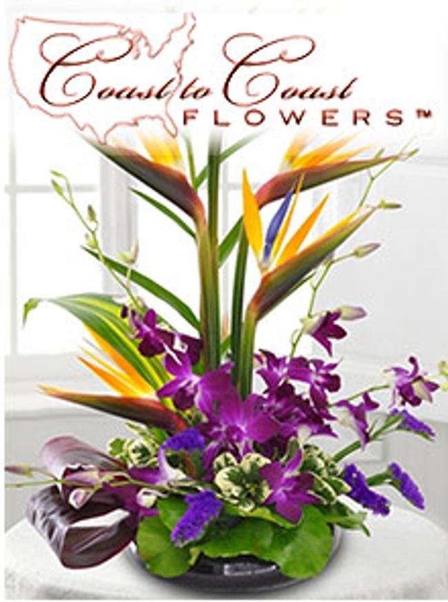 Coast to Coast Floral Catalog Cover