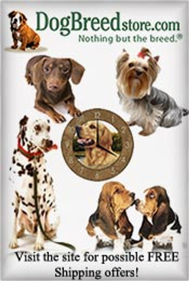 Dog Breed Store Catalog Cover