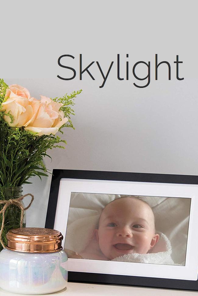 Skylight Frame Catalog Cover