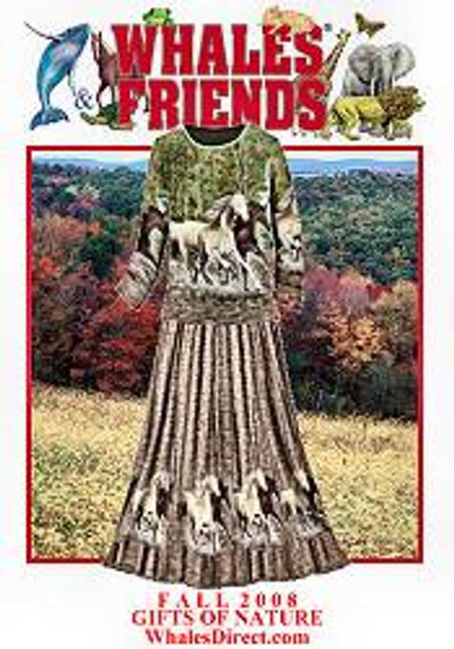 Whales & Friends Catalog Cover