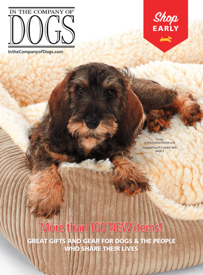 In The Company of Dogs Catalog Cover