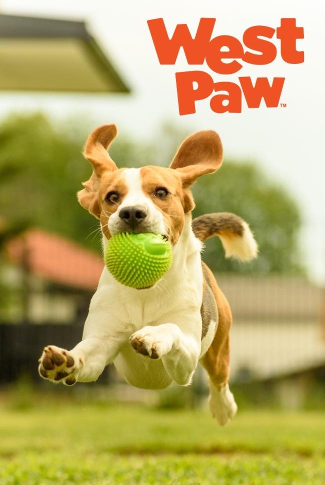 West Paw Dog Toys Catalog Cover