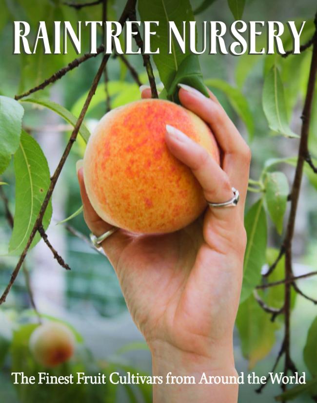 Raintree Nursery Catalog Cover