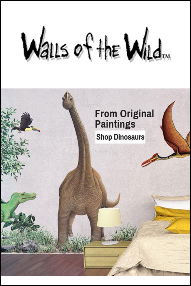 Walls of the Wild Catalog Cover