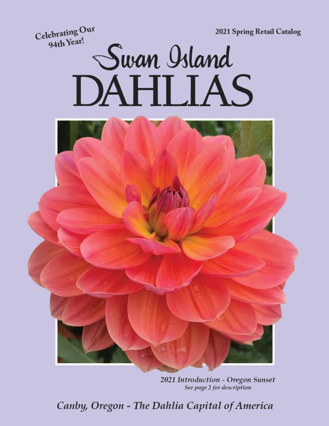 Swan Island Dahlias Catalog Cover