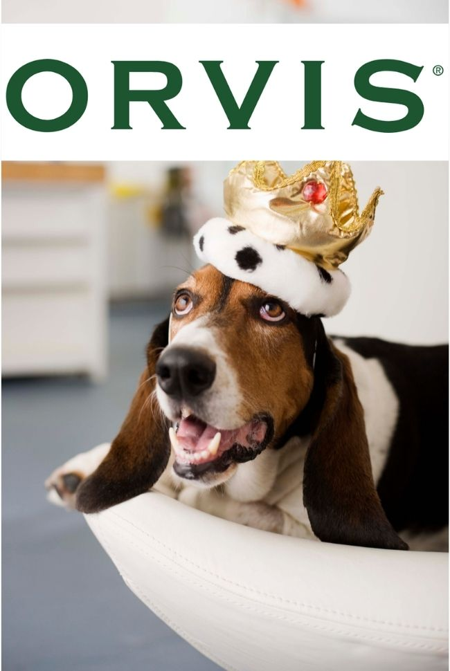 Orvis Pets Catalog Cover