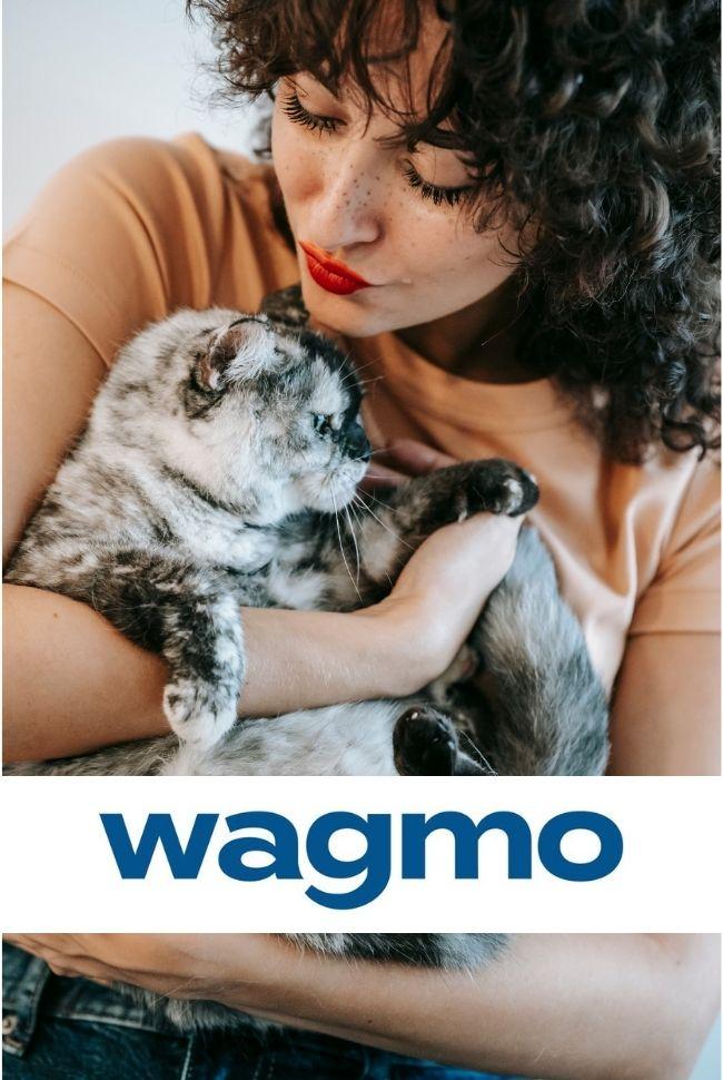 Wagmo Catalog Cover