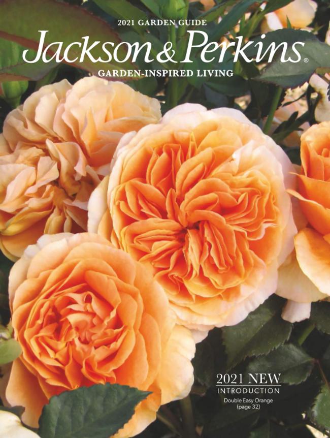 Jackson & Perkins Catalog Cover
