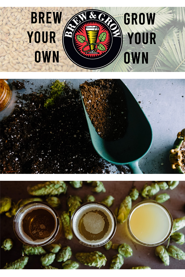 Brew and Grow Catalog Cover