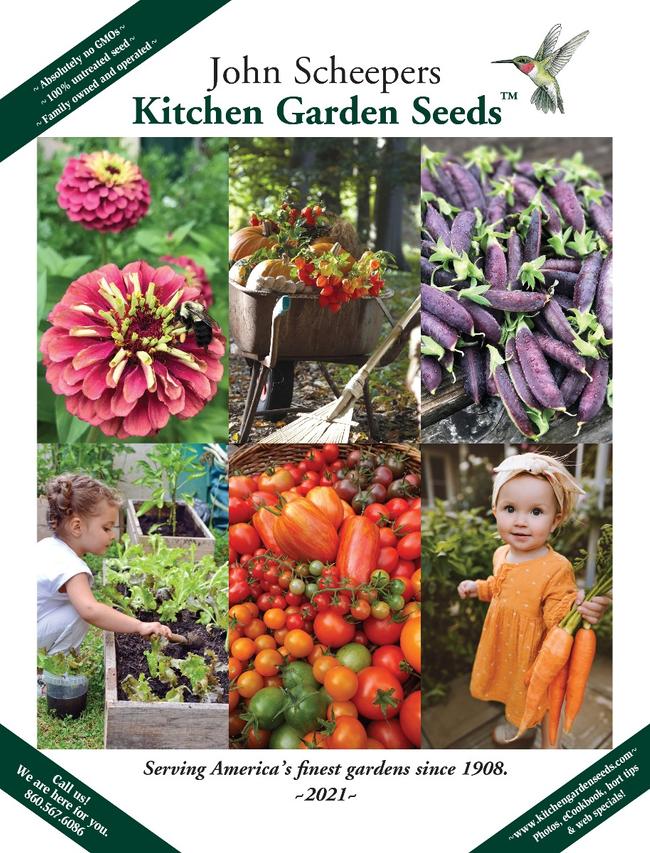 Kitchen Garden Seeds Catalog Cover