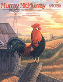 Picture of Murray McMurray Hatchery from Murray McMurray Hatchery catalog