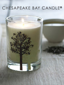 Picture of Chesapeake Bay Candle from Chesapeake Bay Candle catalog