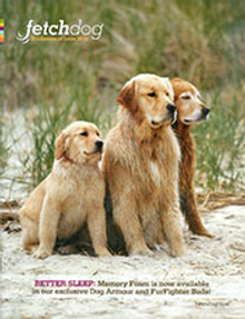 Picture of dog car seat cover from FetchDog.com catalog