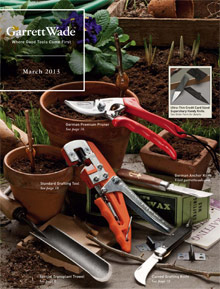 Picture of woodworkers tools from Garrett Wade Hand Tools catalog