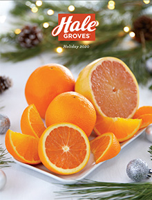 Picture of Florida oranges from Hale Groves - Indrio Brands