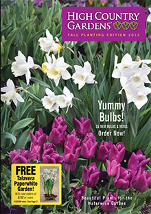 Picture of High Country Gardens catalog from High Country Gardens catalog