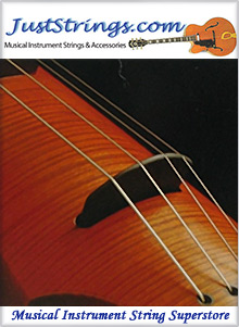 Picture of instrument strings from JustStrings.com catalog