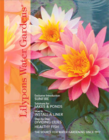 Picture of water garden supplies from Lilypons Water Gardens catalog