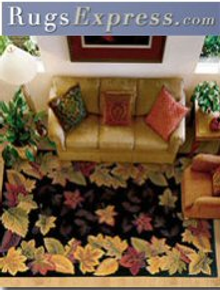 Picture of contemporary area rugs from Rugs Express catalog