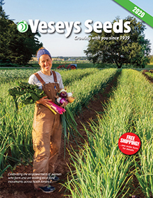 Picture of veseys catalog from Veseys