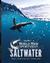 Cabela's Saltwater Master