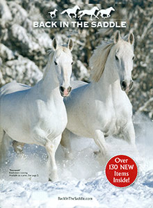 Picture of unique horse gifts from Back in the Saddle catalog