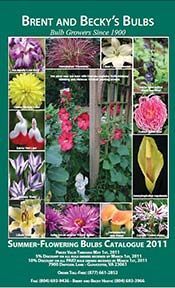 Picture of flower bulb catalogs from Brent and Becky's Bulbs catalog