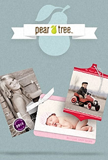 Picture of Pear Tree Greetings from Pear Tree Greetings catalog