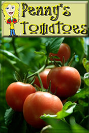 Picture of tomato seed catalog from Penny's Tomatoes catalog